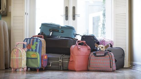Expat family's suitcases packed, waiting at the door for travel back to the United States